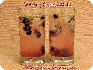 Blueberry Collins Cocktail